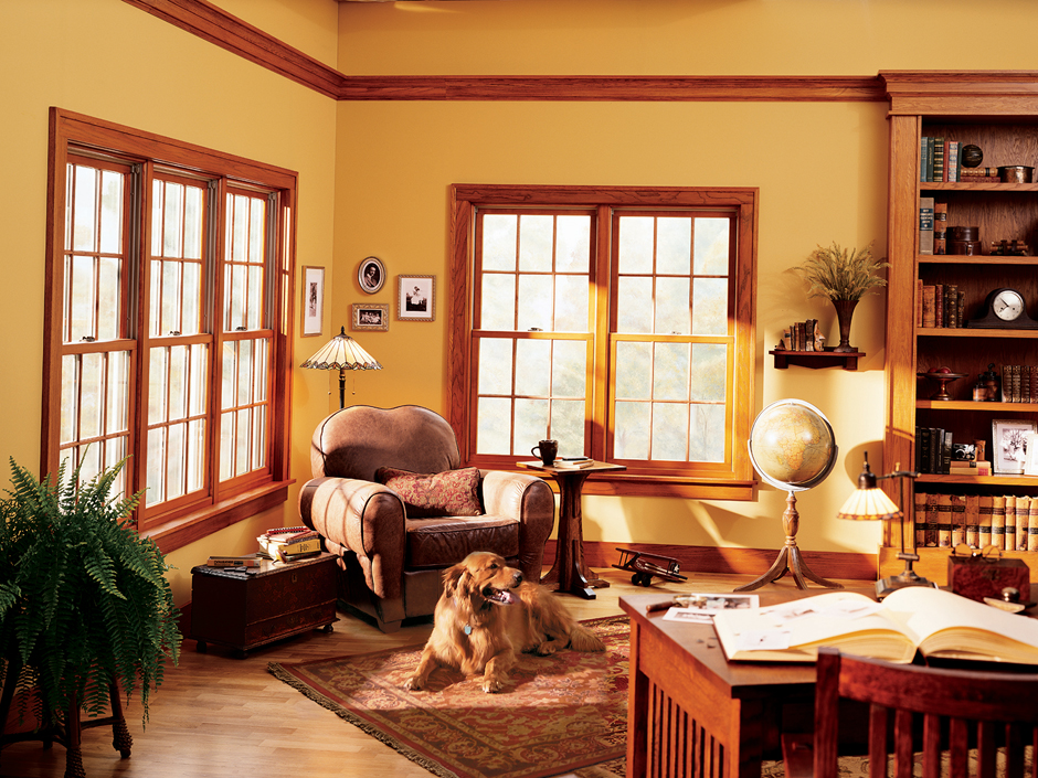 Double Hung Feature Window 1